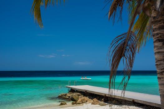 Caribbean 1.jpg