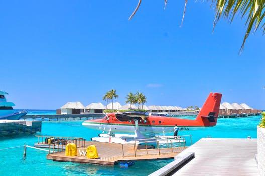 Caribbean 104.jpeg