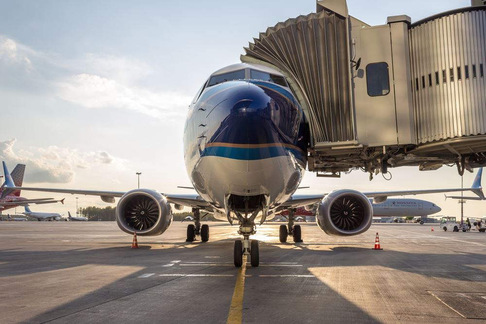737 Max Grounded to '20?