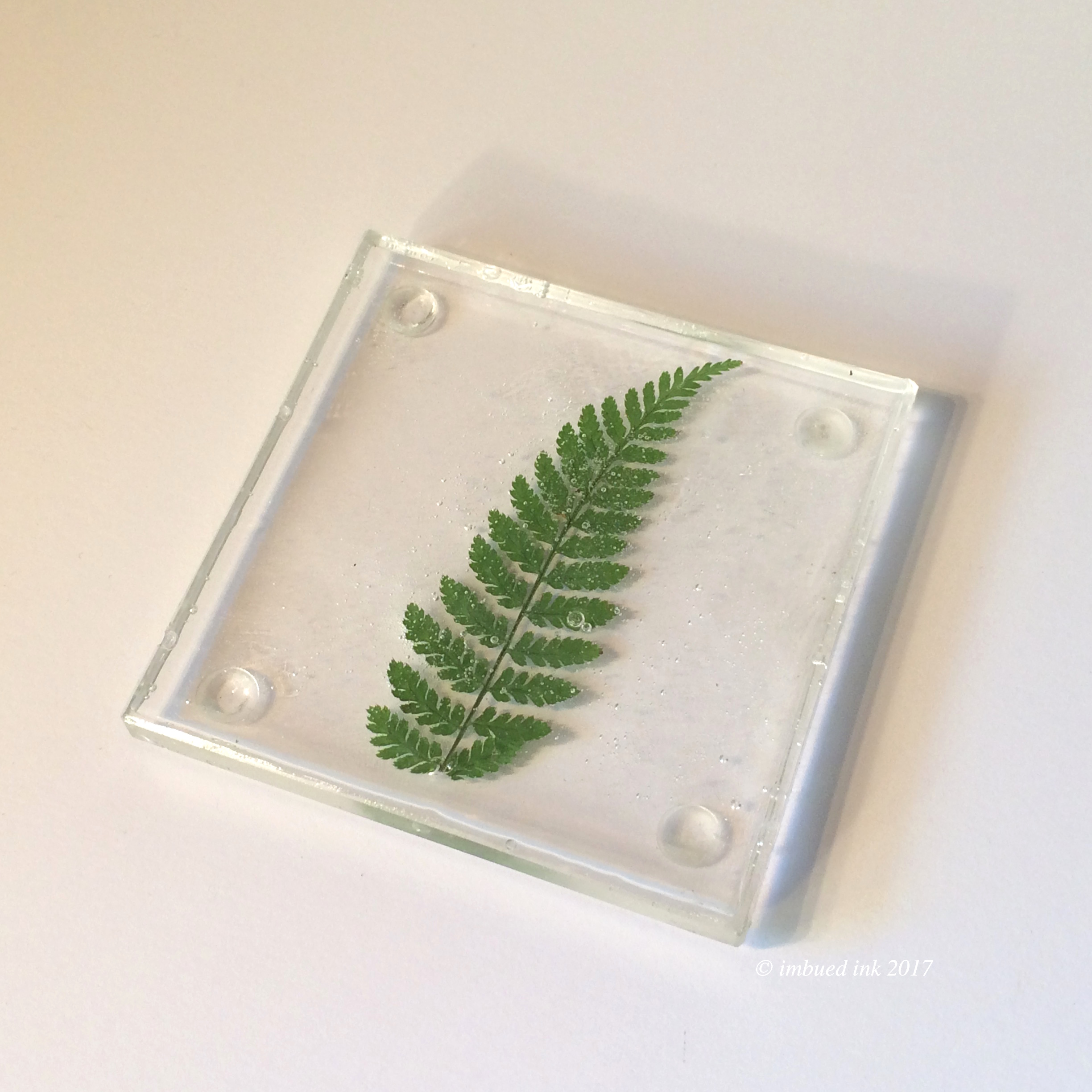fern square coaster.JPG