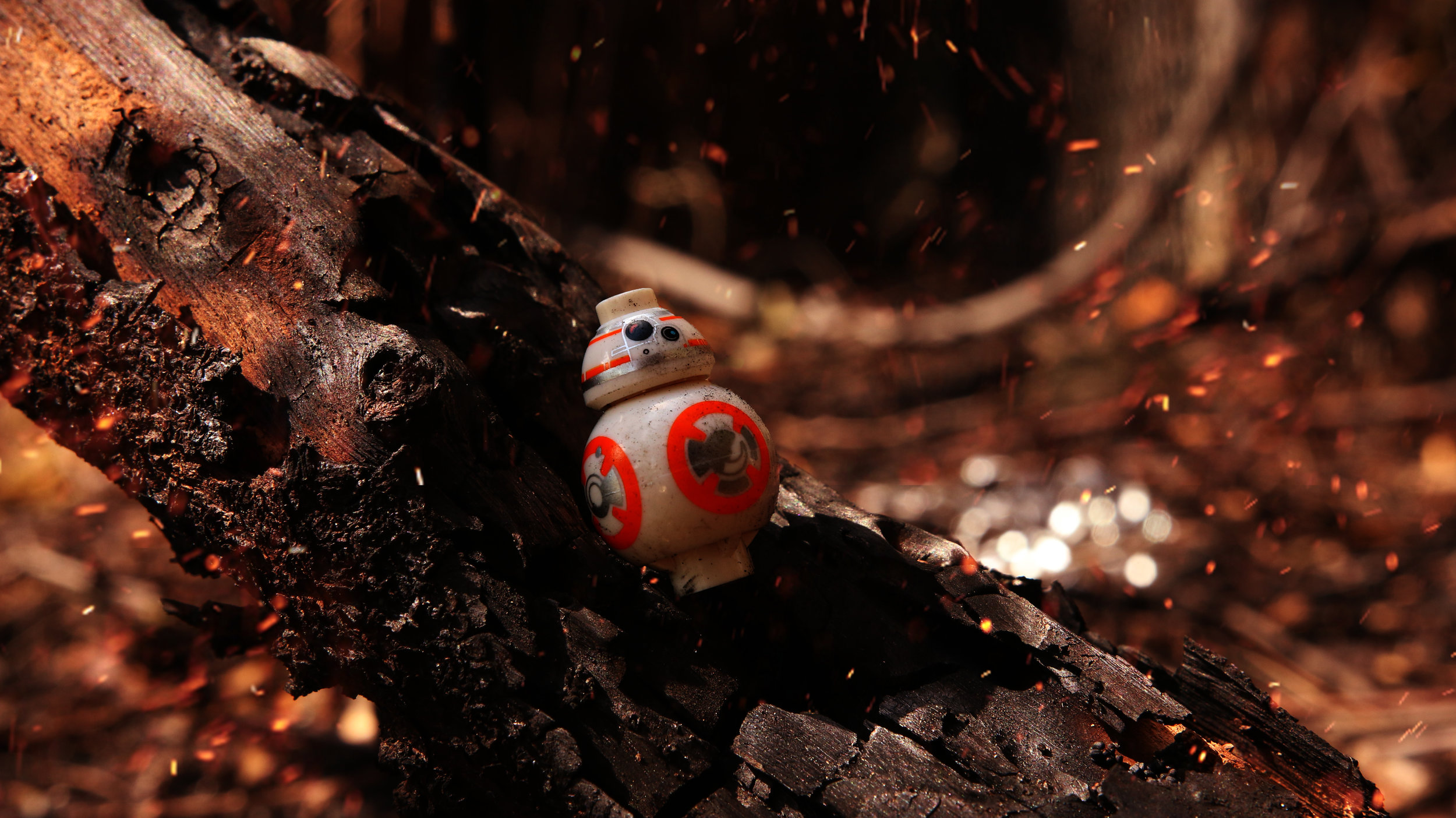 bb-8 take down.jpg
