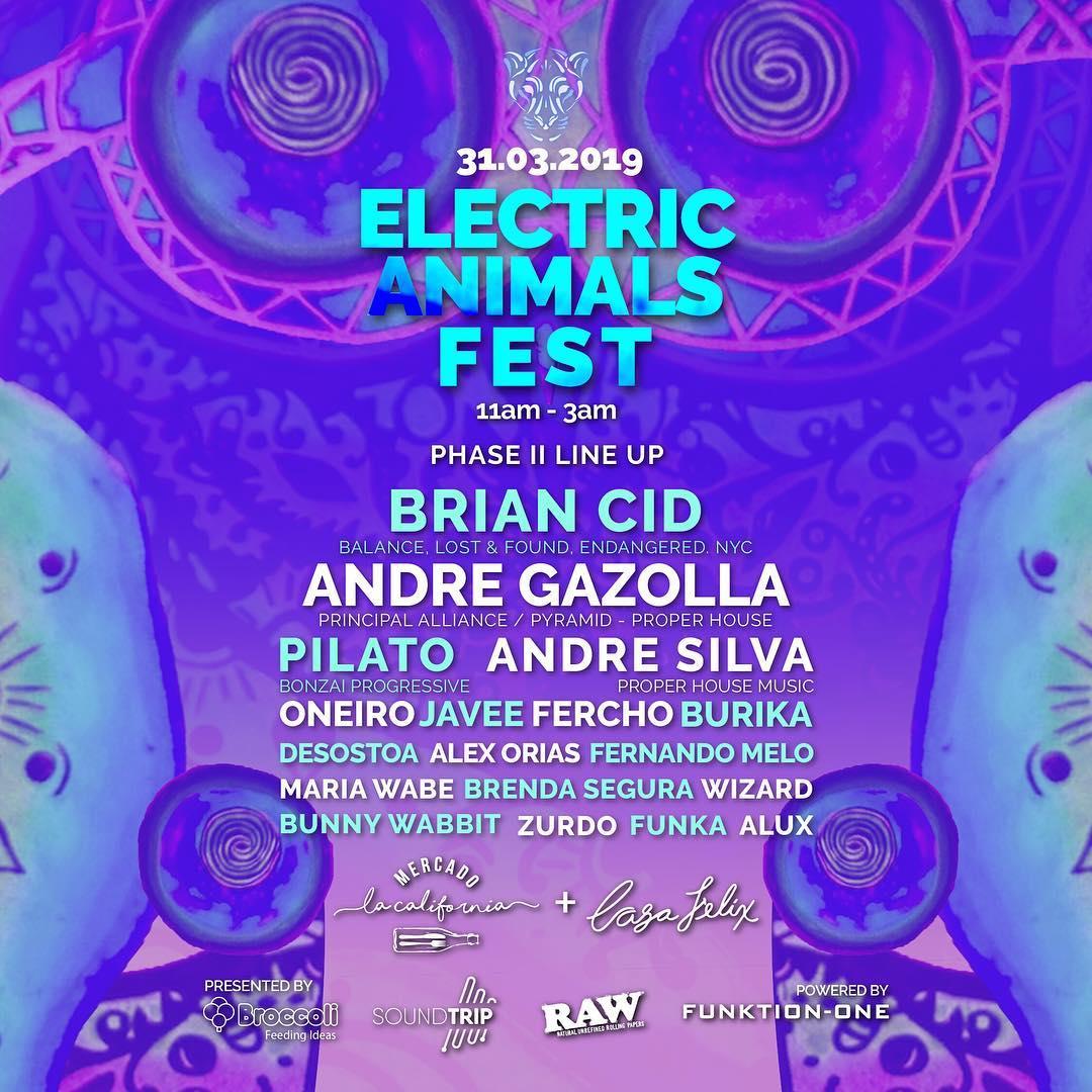 03.31.2019 - Electric Animals Festival, Costa Rica.jpg