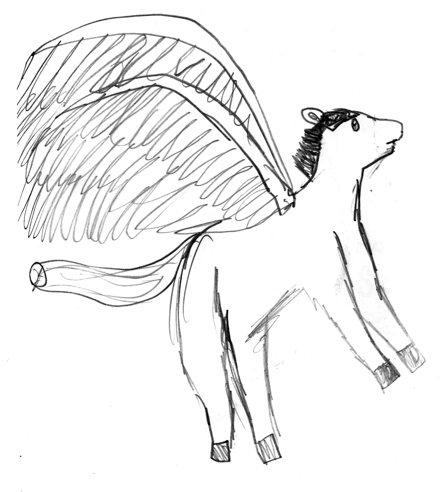 Pegasus by an elementary student.