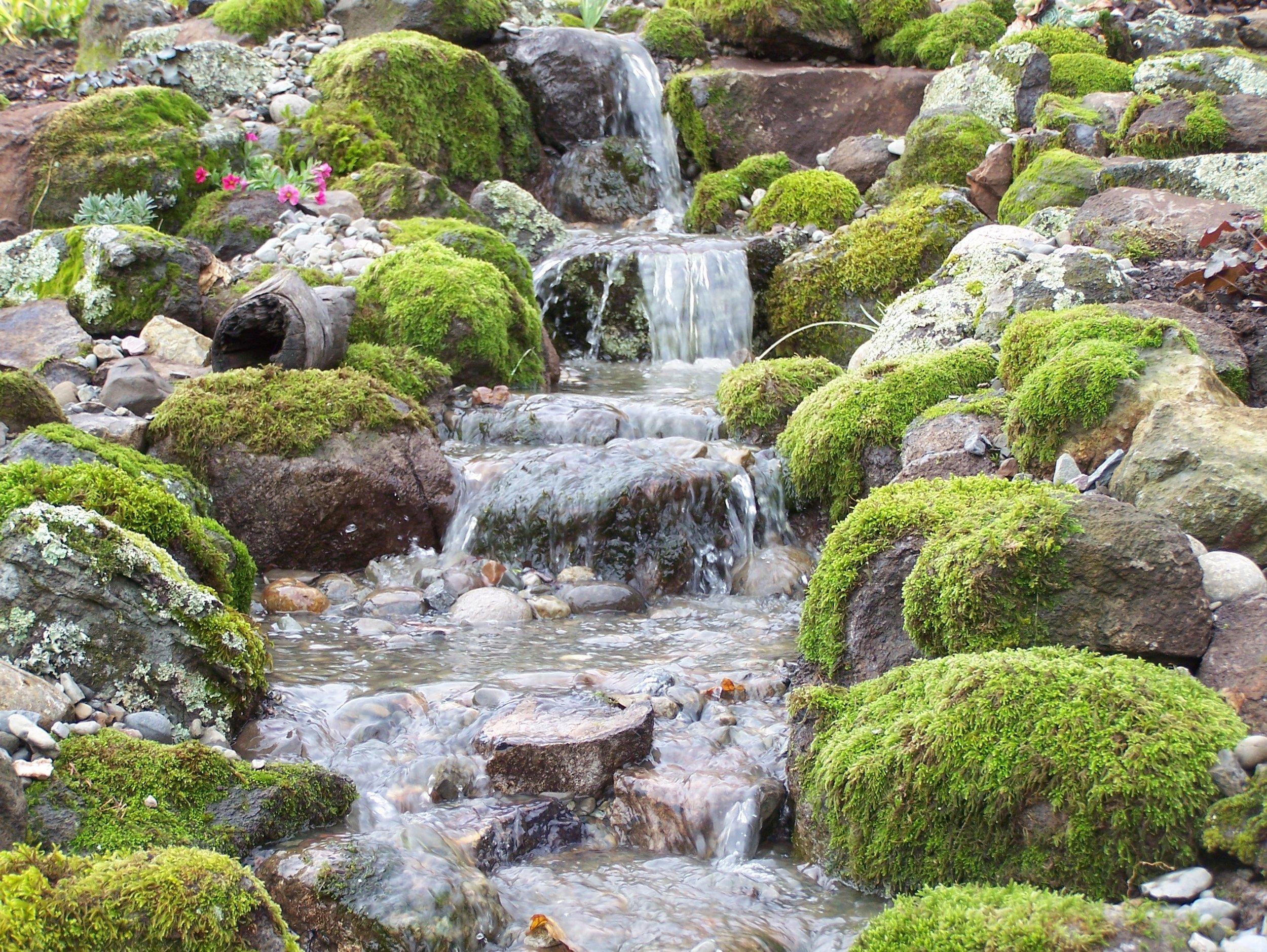 waterfasll (1).jpg