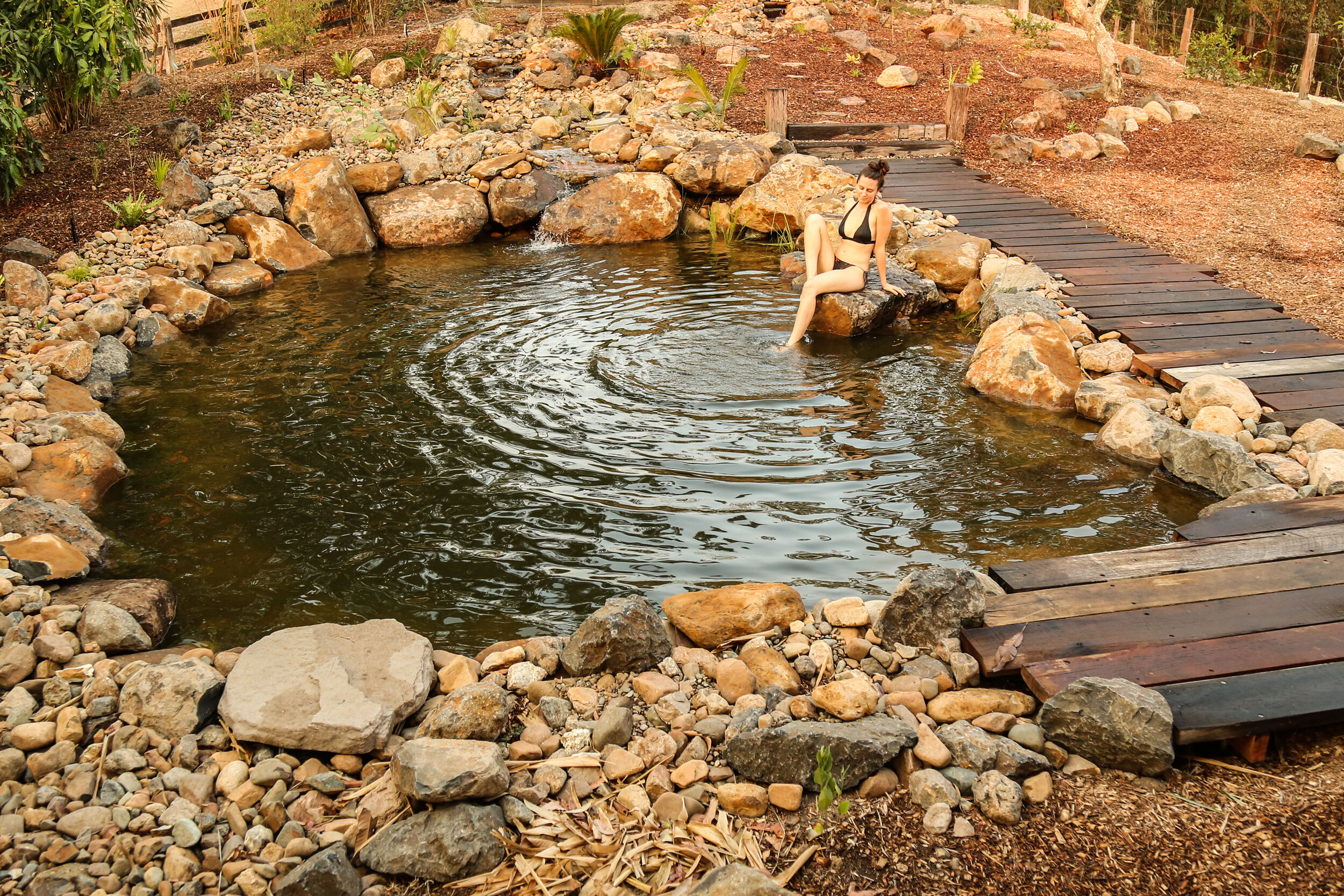 Natural Swimming Pool Flo Gardens Natural Pools Waterfalls Ecosystem Ponds Landscaping Byron Bay