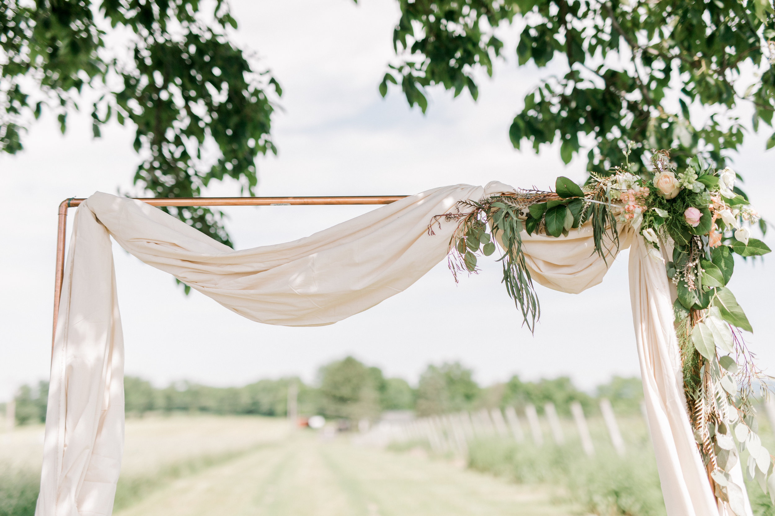 haley-richter-photography-summer-vineyard-wedding-boho-ceremony-arch-copper-blush-cloth-greenery-simple-elegant-rustic