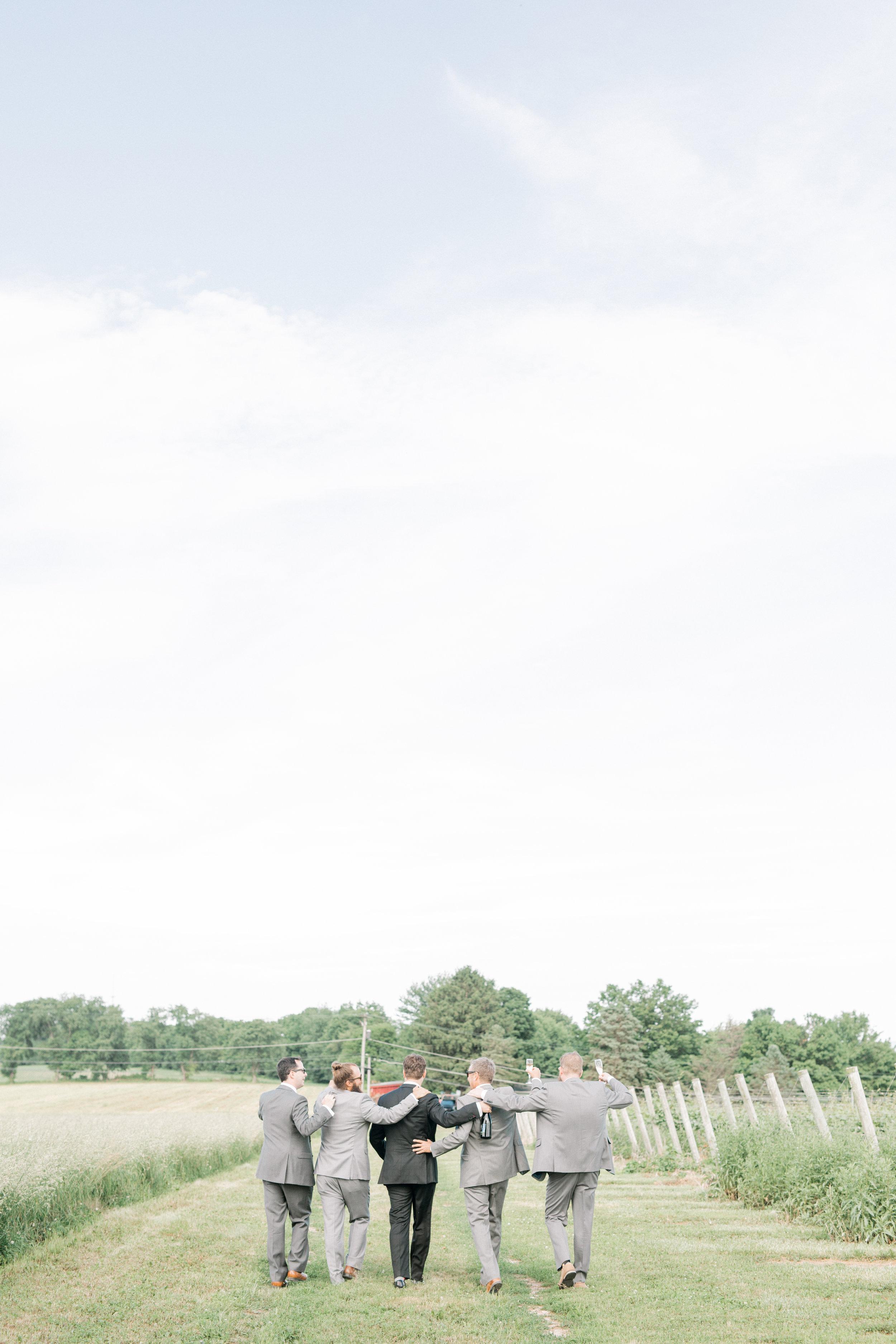 haley-richter-photography-fero-vineyards-summer-wedding-allison-and-josh-winery-pennsylvania-145.jpg