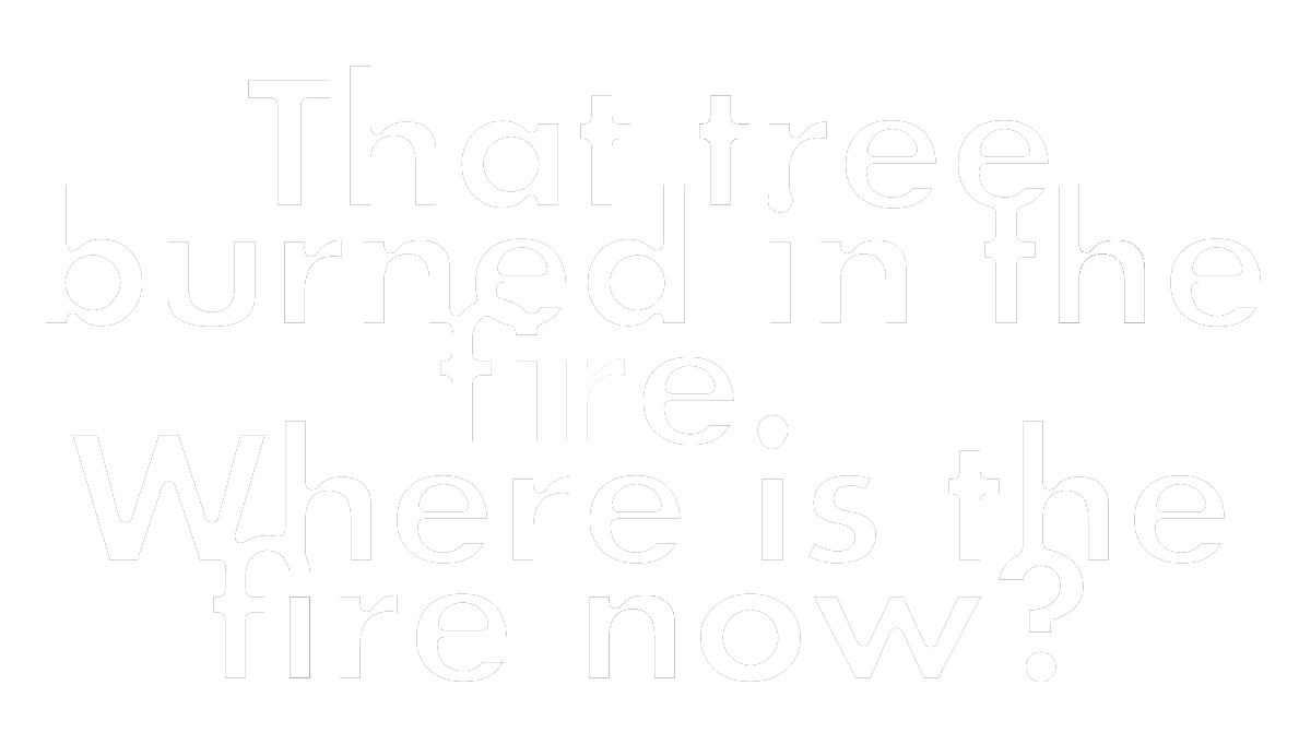 FireSeason_quote.png