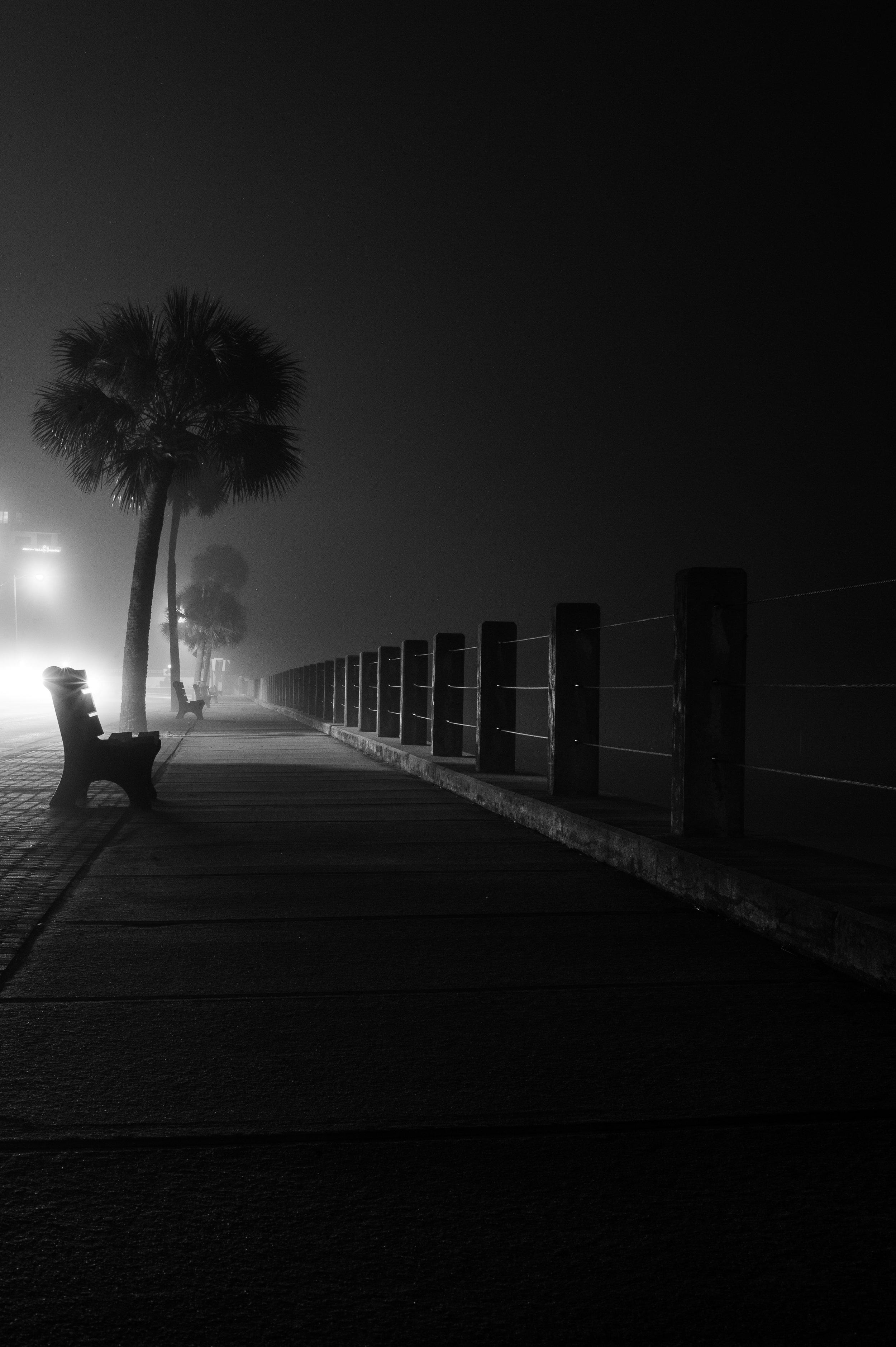 beach drive bench in fog bw-1.jpg