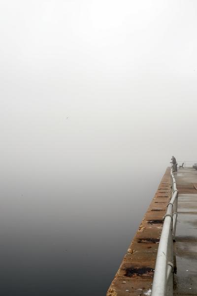 fog at marina.jpg