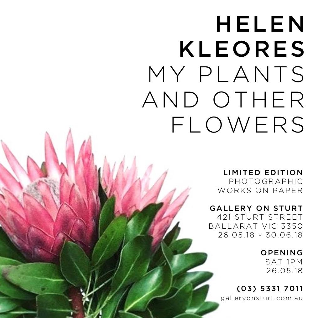 HK_Exhibition_HK_King_Protea_with_Helen.jpg