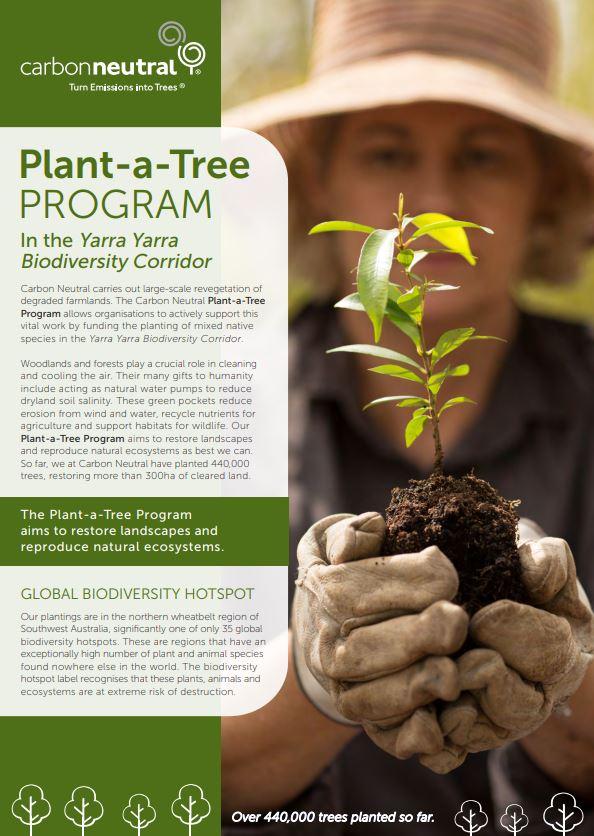 Plant a Tree2.JPG
