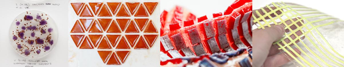 W7_Collage bioplastic composites.jpg