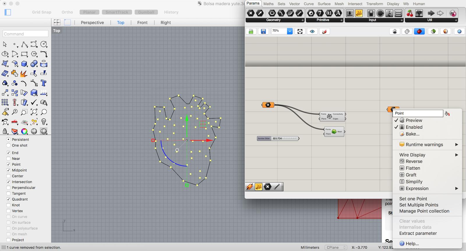 W9_Parametric heart 1.png
