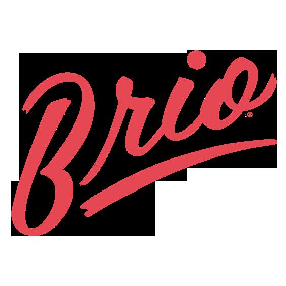 brio-logo-small copy.png