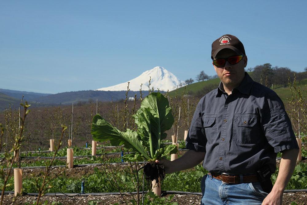 Farm-Vegetables-1.JPG