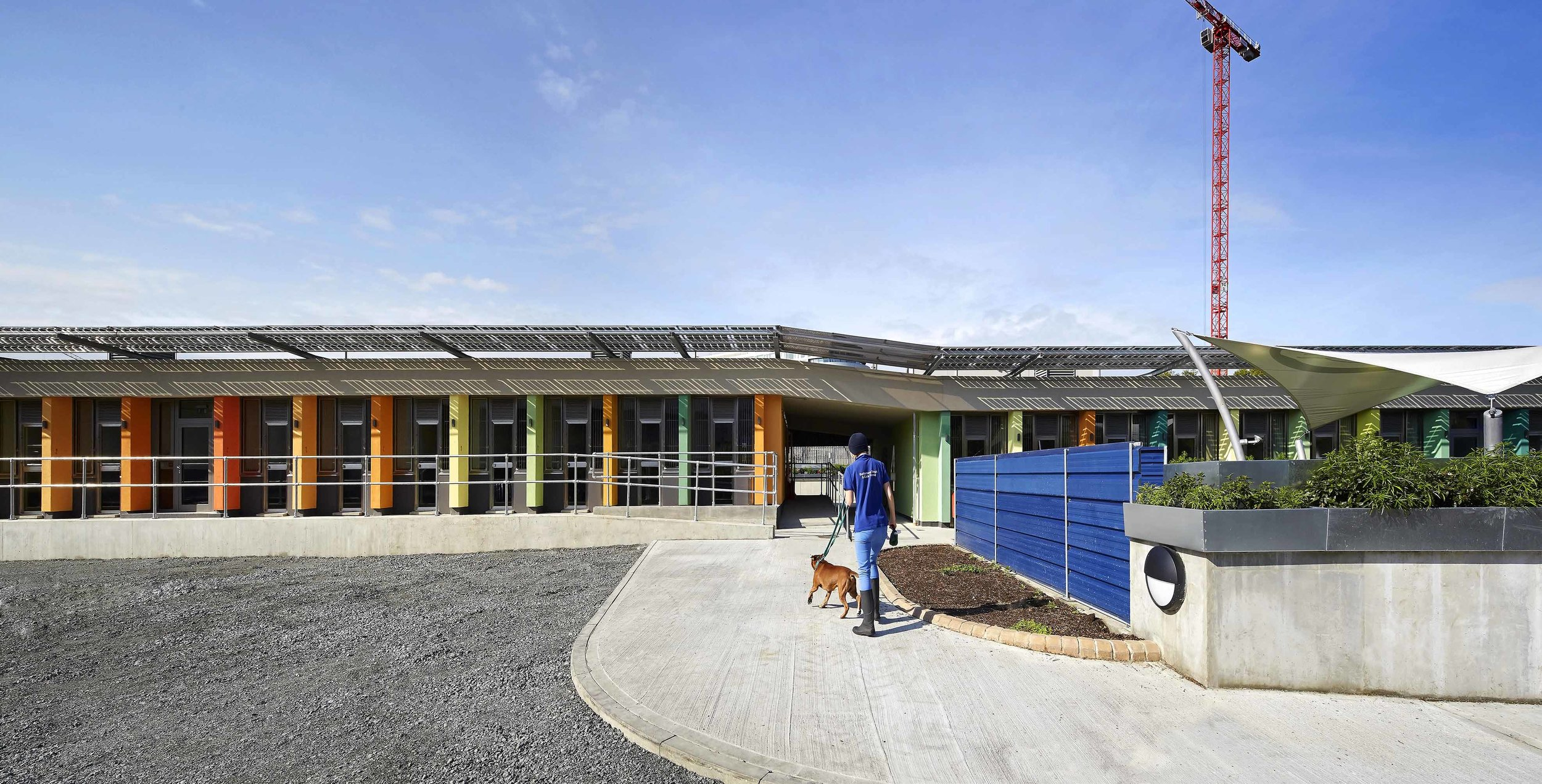 JCA_Battersea Dogs and Cats Home_©Hufton+Crow_020ab.jpg