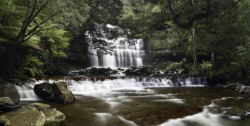 liffey-falls-2016-72dpi.jpg