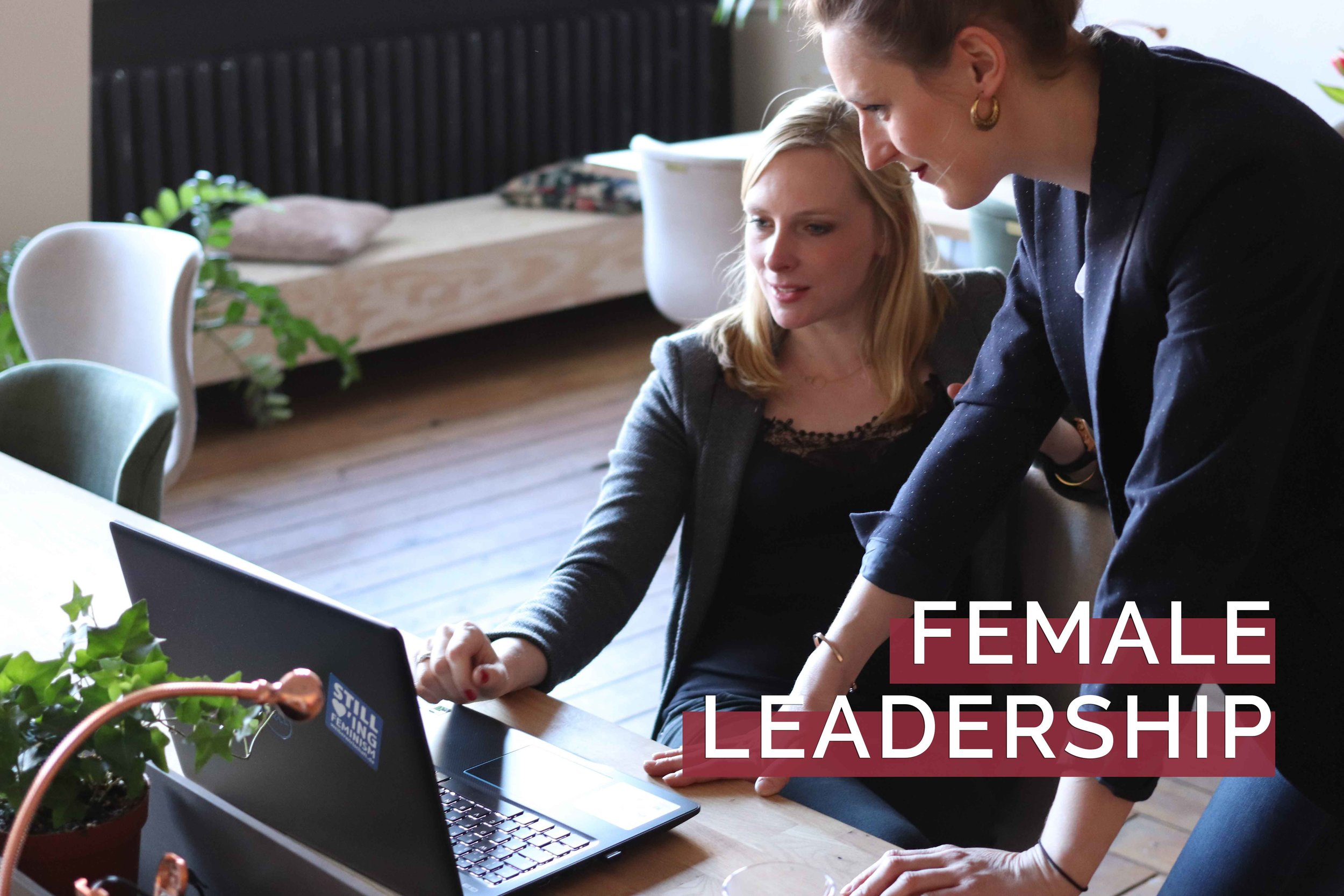 Step 2. - Co-Worker - Empowering women in workspace. Lead by Liesbeth. Year 2007. A part of know-how offered by her consultancy SHE works with wo-men © .Coaching women to take up leadership roles and introducing diversity thinking as path to innovation.