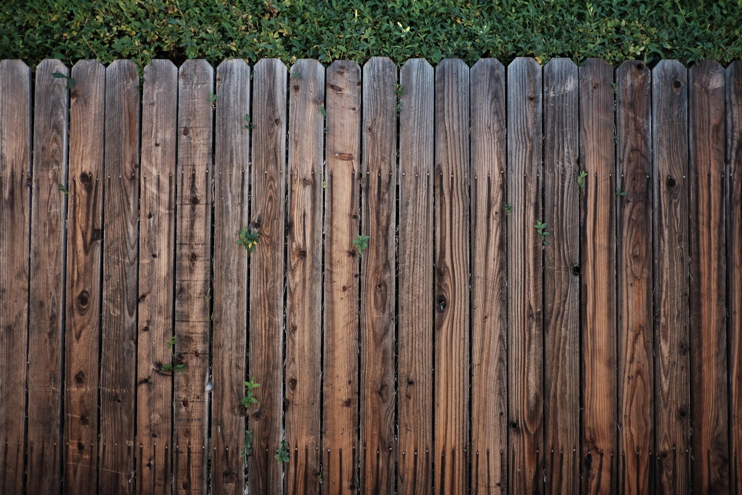 how-to-keep-your-backyard-secure2.jpeg