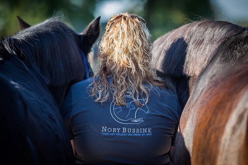 Beweegt je paard niet lekker door zijn lijf? - Kantelt hij bijvoorbeeld zijn hoofd? Loopt hij onregelmatig? Of buigt hij niet goed in naar links en/of rechts?