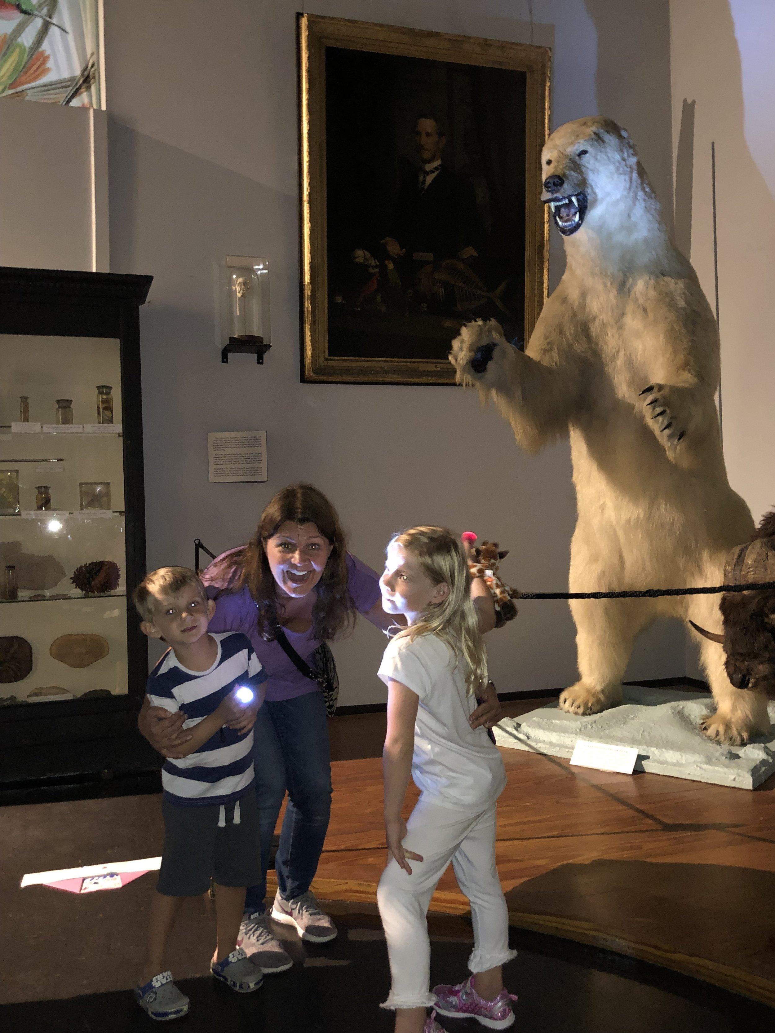 A polar bear in Charleston?!?