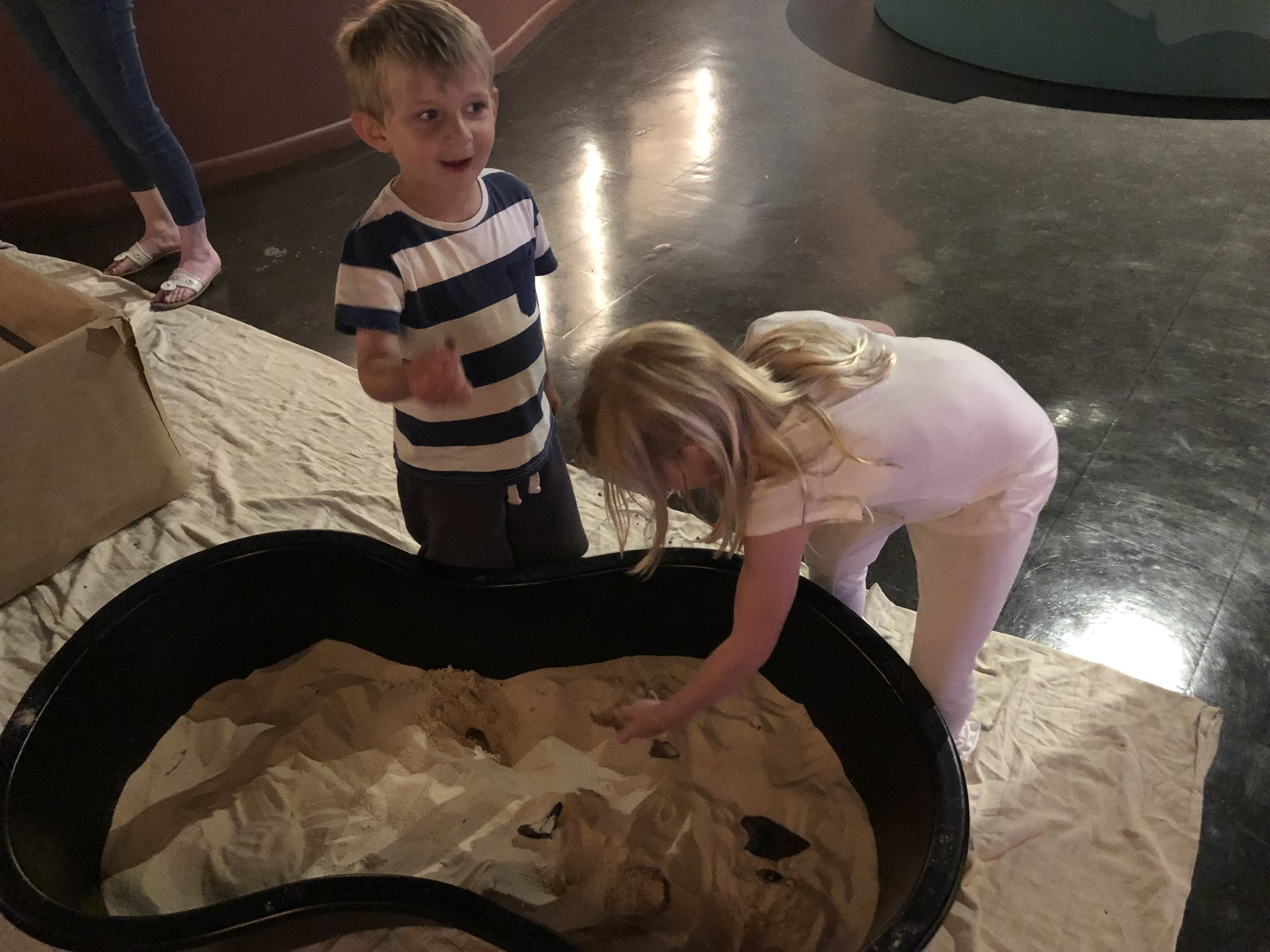 Digging for fossils in the sand.