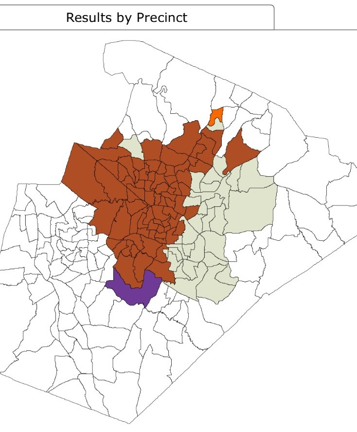 raleigh mayoral results map.jpg