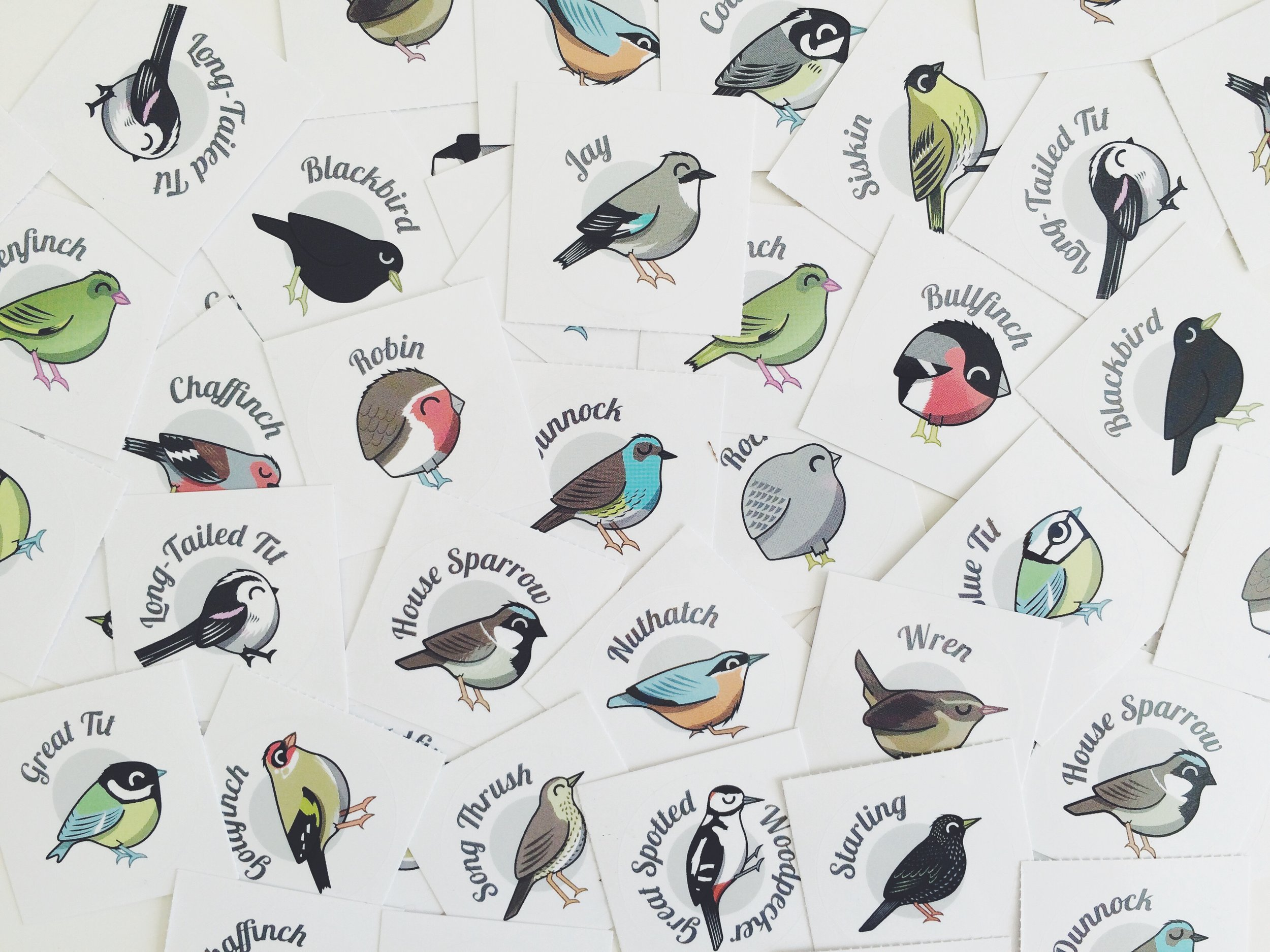 Studio Wood - Peck Illustrations 01