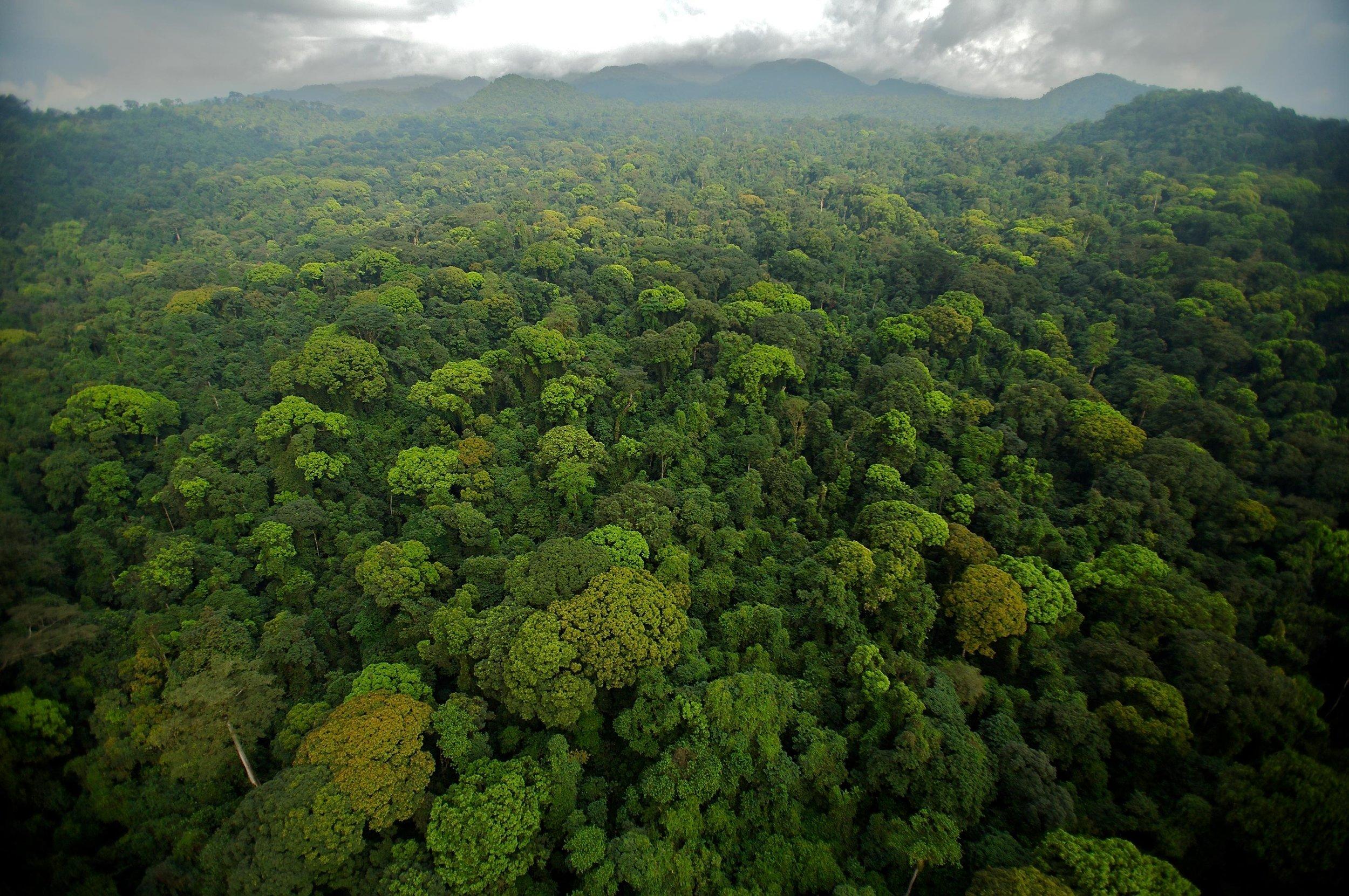 equatorial-guinea-travel.jpg