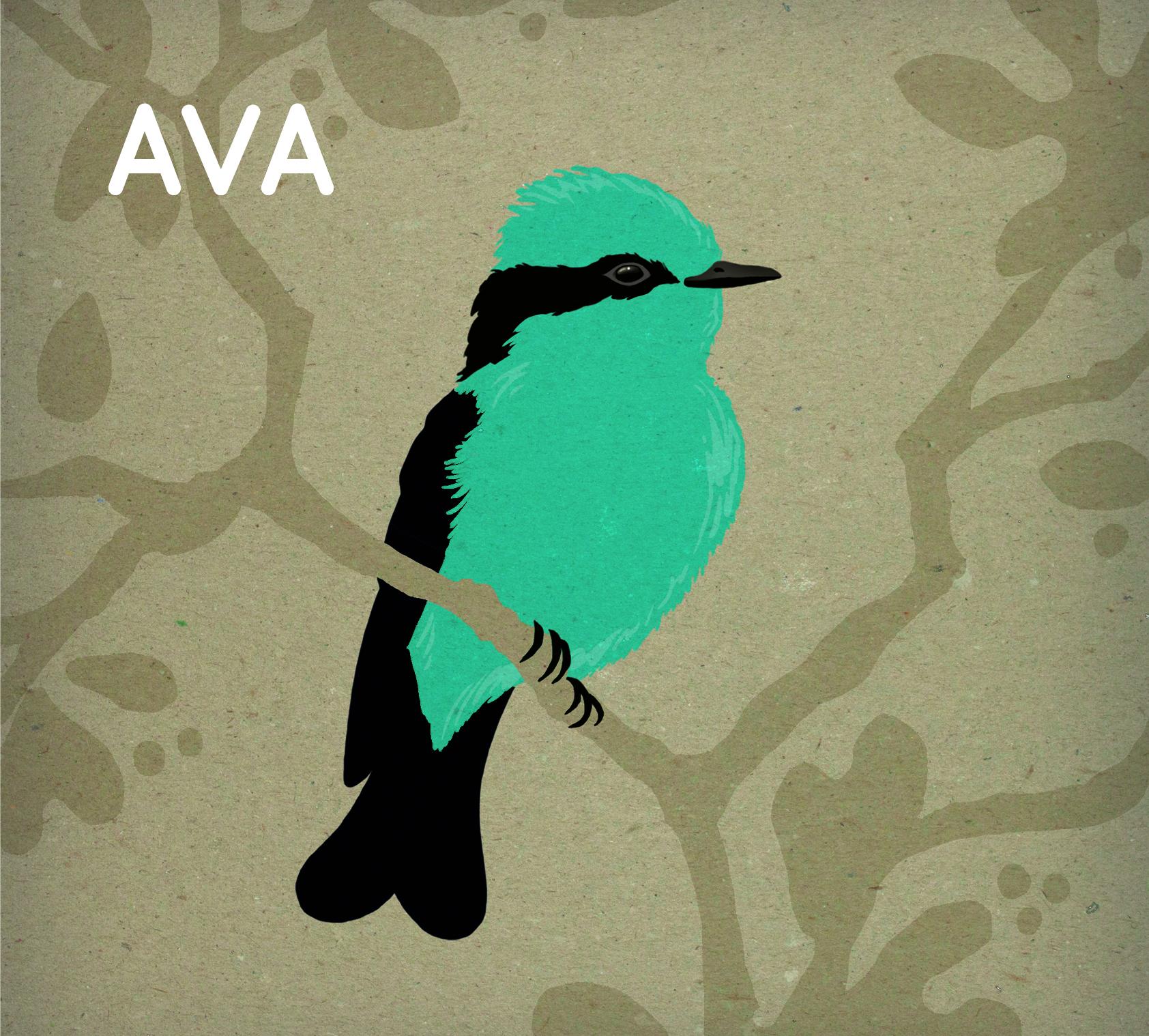 Ava_cover.jpg