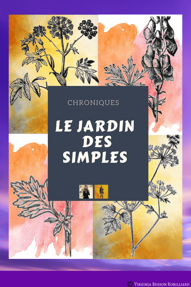 image chroniques jardin des simples, présenté par Sorah et Avicenne personnages de Liens et Sortilèges