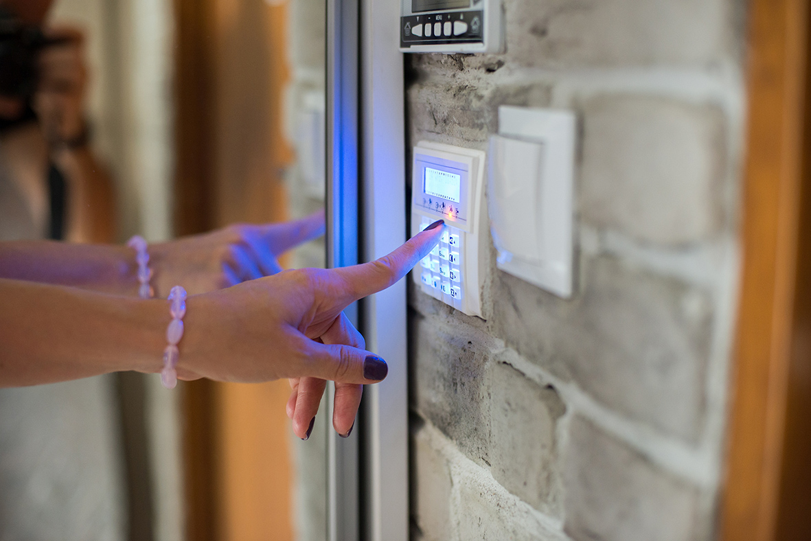 Security Panel and Keypad