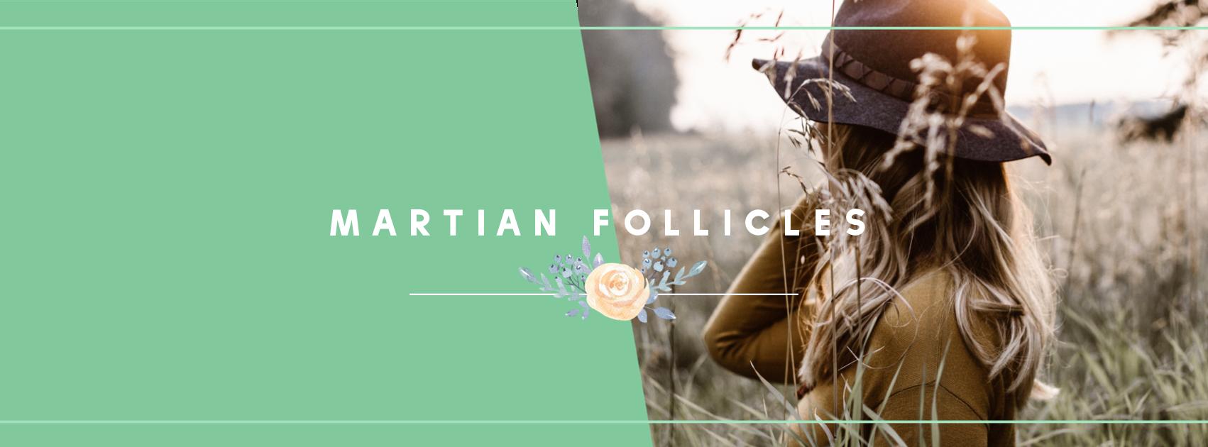 martian-follicles-banner