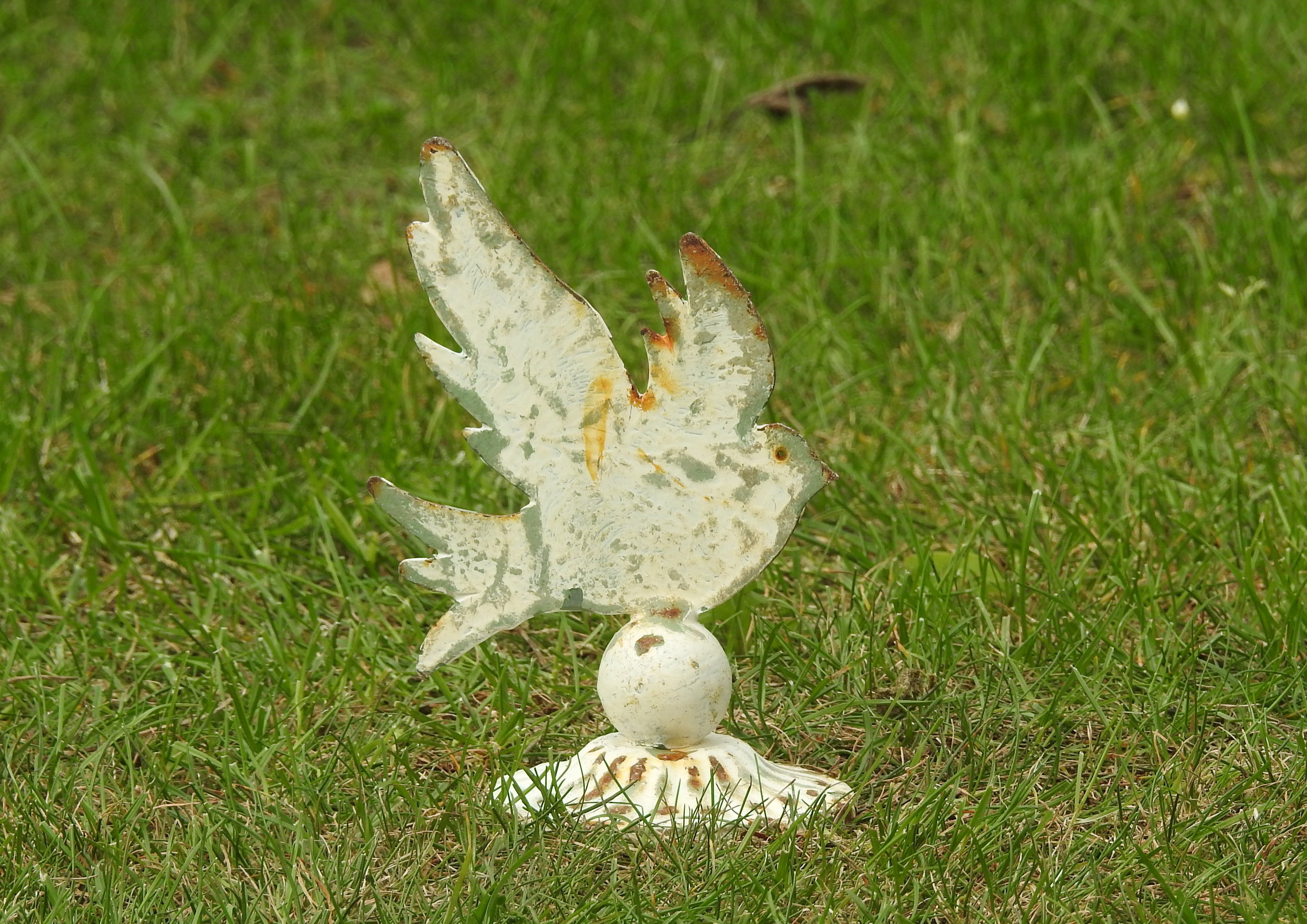 Mini Dove - £18 - 13 x 11cm