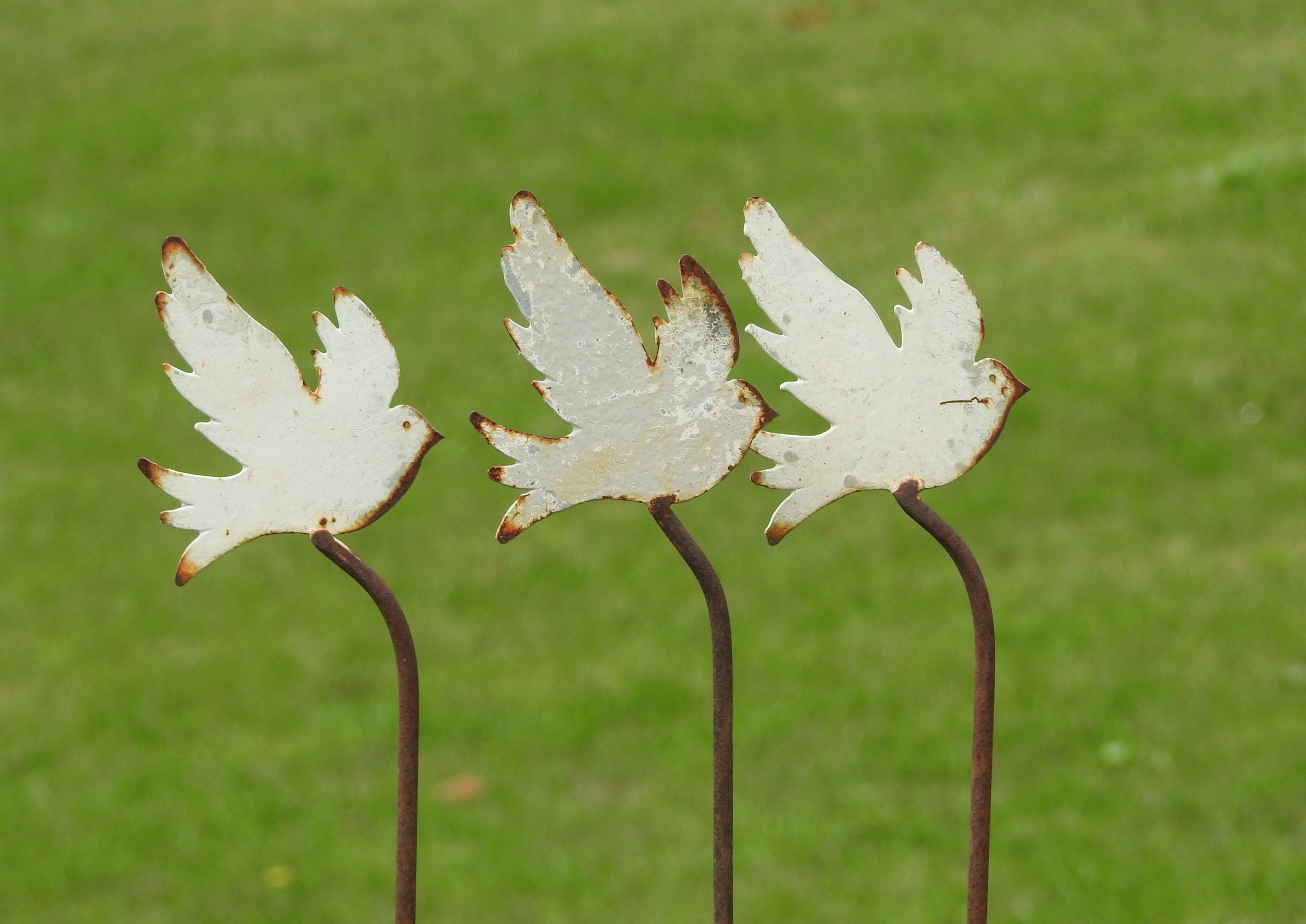 Doves on a 1m stake - £14 -