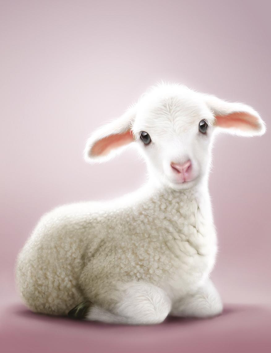 Lamb_All_Alone.jpg