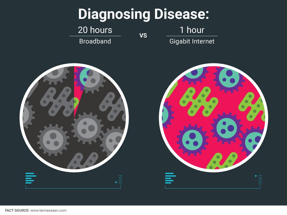 Fiber_Stat_Disease.jpg