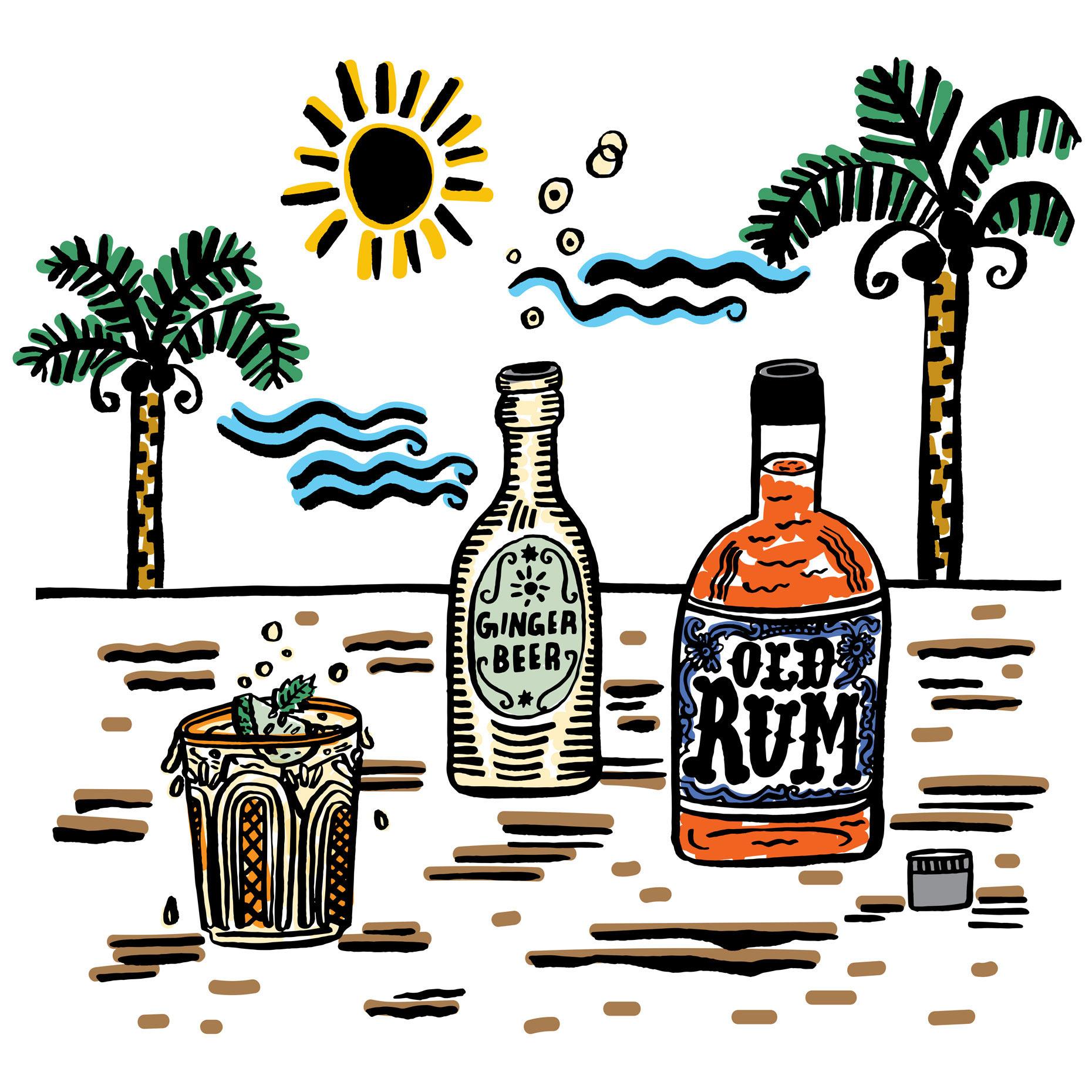 dark_rum_ginger_beer.jpg