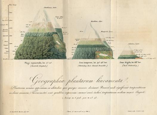 sA.07_-_Geographica_plantarum_-_QO1.jpg