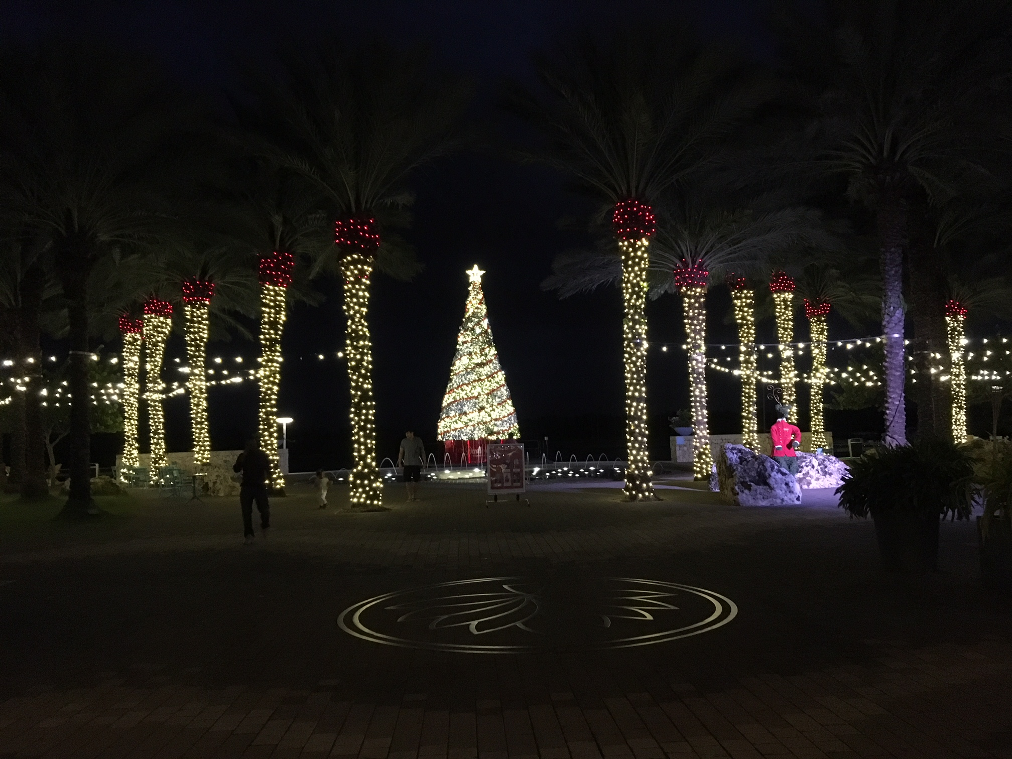 Camana Bay during the holidays