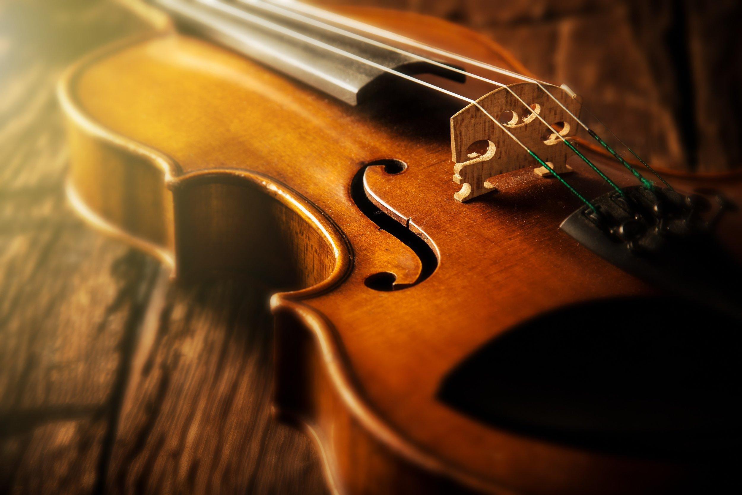 Sarah Wenger Violin - Seattle, waSnoqualmie, WAMukilteo, WA