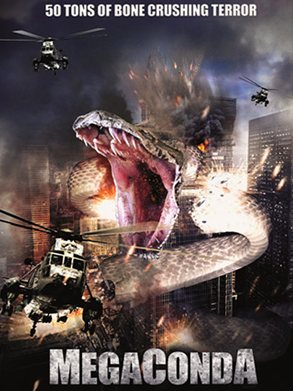 Here-Megaconda-Full-Image-en-US.jpg