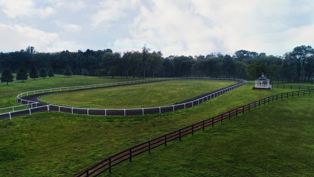 We offer a 250 m oval track compliant to FEIF rules and guidelines.