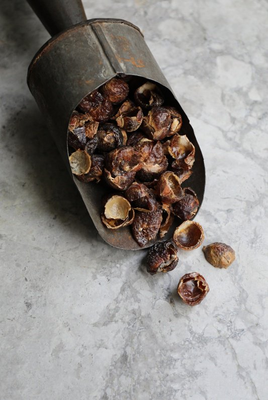soap nuts pic.jpg