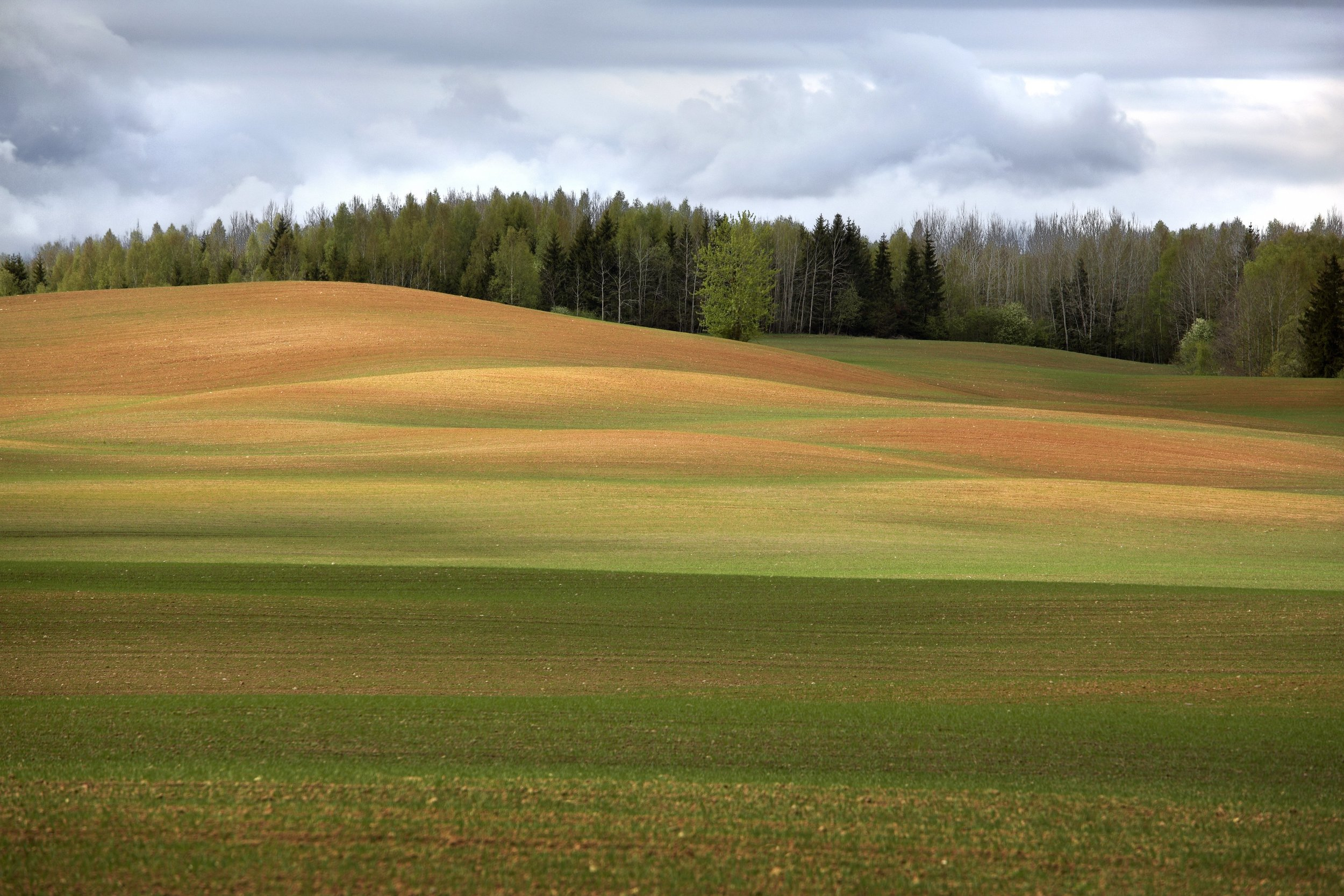 IU14_Colours_of_Latvian_countryside_I_Urtans.jpeg