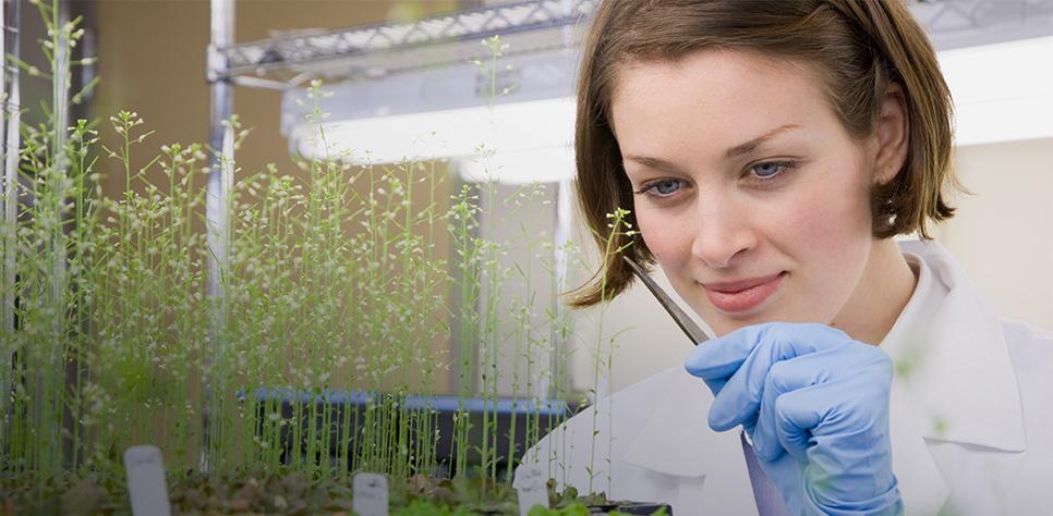 Focus-industries_life-sciences_biotech-scientist_desktop.jpg