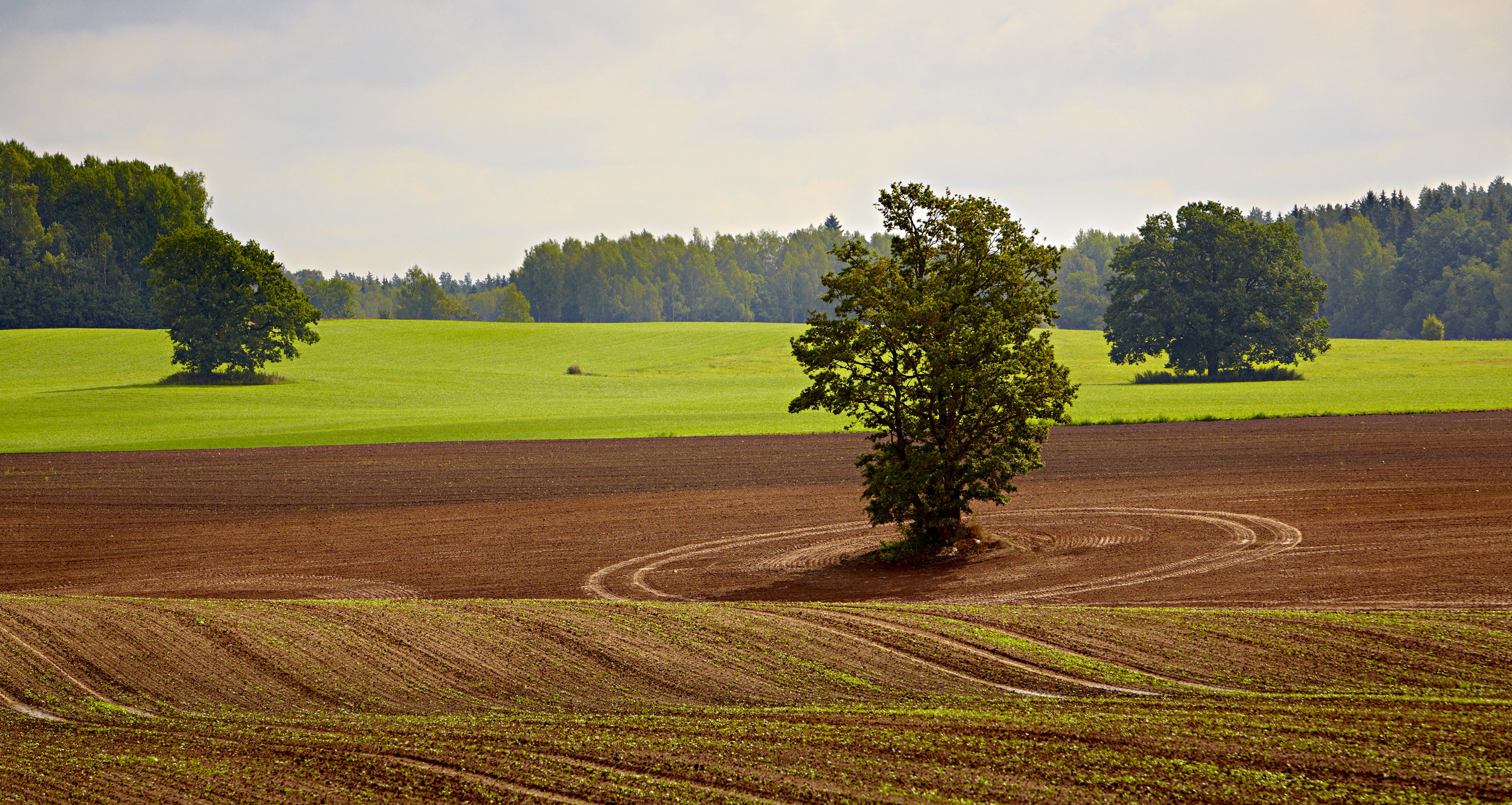 Latvian countryside