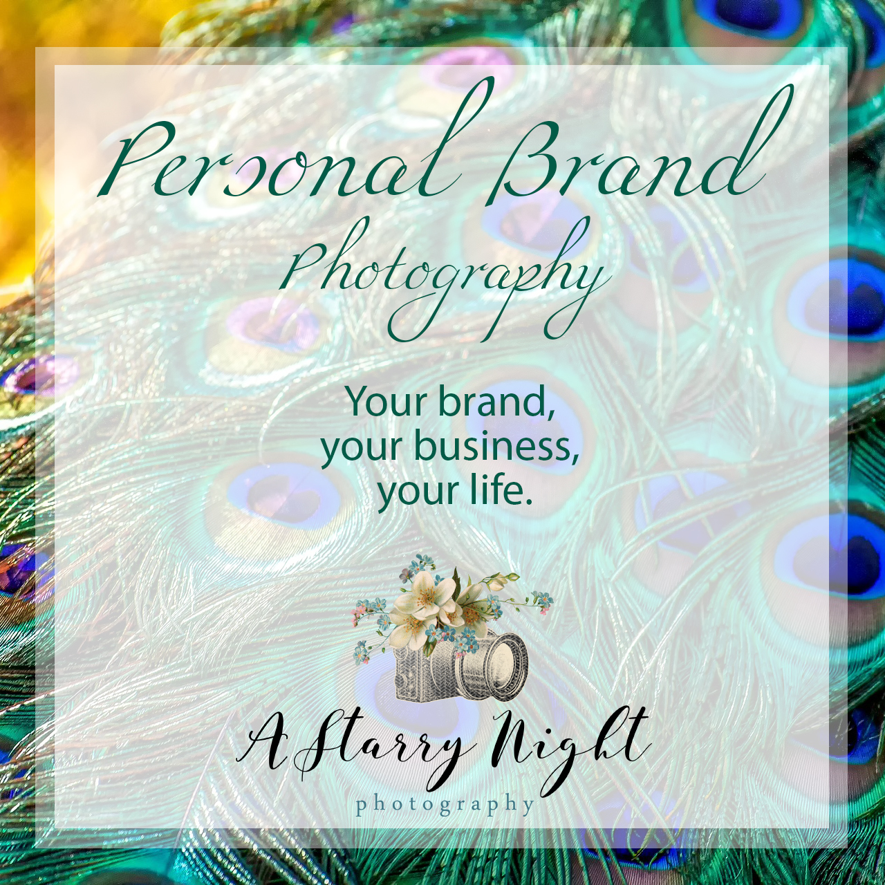 Personal-Brand-Photography-Central-Mid-Michigan