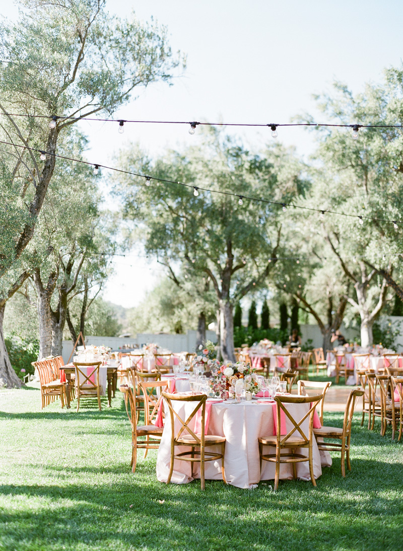 janaeshields.com | Janae Shields Photography | San Francisco Photographer | Wedding Photography in the Bay Area of Northern California | B.R. Cohn Winery Events _ (6).jpg